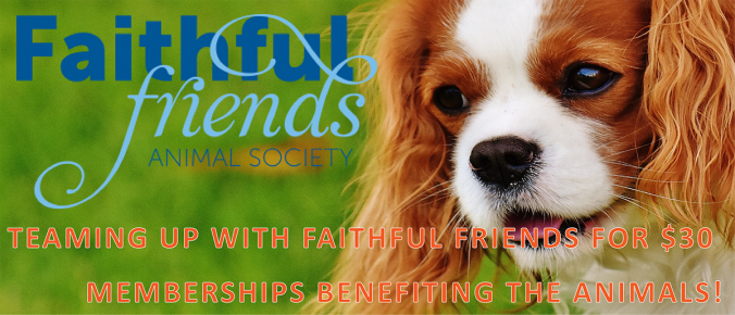 faithful friends teams up with coreten fitness